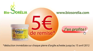 La Pierre d'Argile Bio-Sorelia sur BFM TV